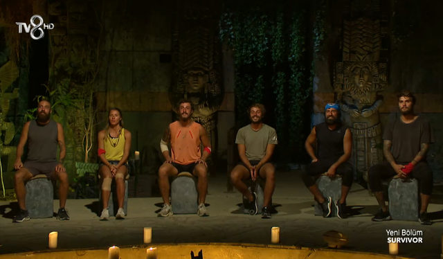 survivorfinal1