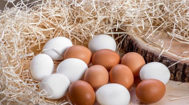 yumurta-sari