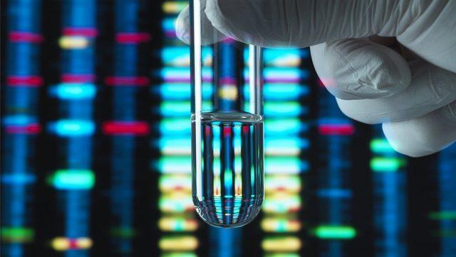 Bazı araştırmacılar DNA'nın bu şekilde kullanılmasının genetiğe olduğundan fazla önem atfedilmesine neden olduğunu söylüyor