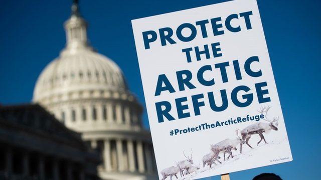 Arktik bölgesinde yaşayan yerli halkların liderleri ve çevreciler kararı memniyetle karşıladı