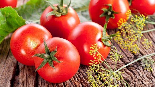 Bakan Fakıbaba'dan domates müjdesi