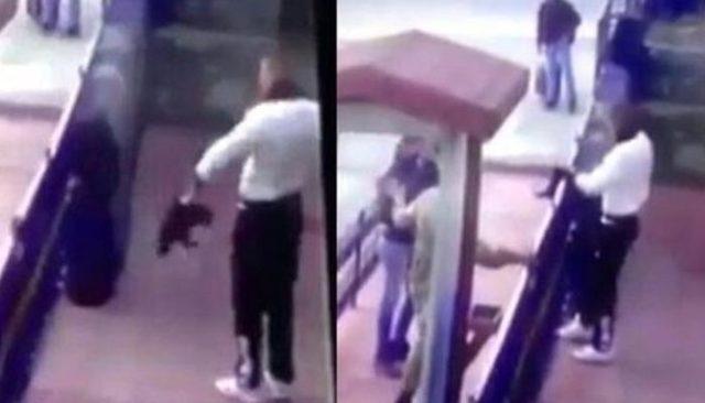 Erzincan'da kediye işkence yapan erle ilgili isyan büyüyor