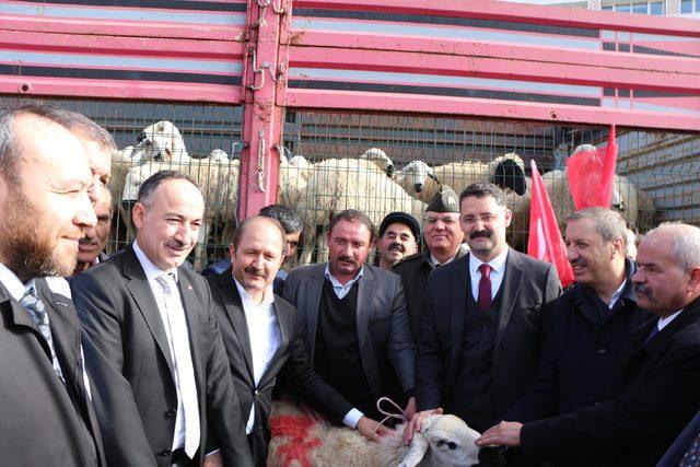 Kırıkkaleli çobanlardan Afrin'deki Mehmetçiklere 71 kurbanlık