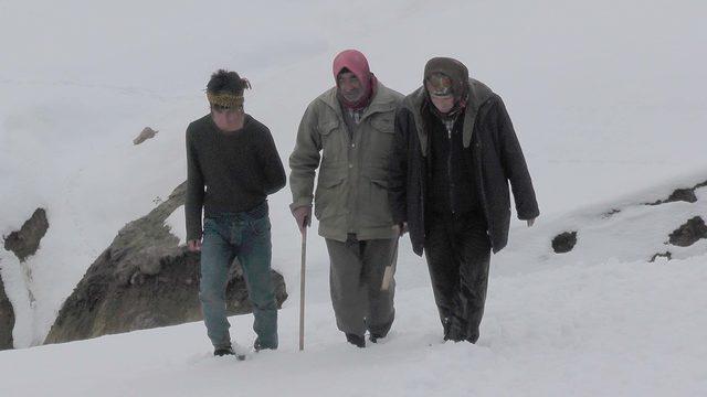 Hedikle karları ezip, hayvanların beslenmesini sağlıyorlar