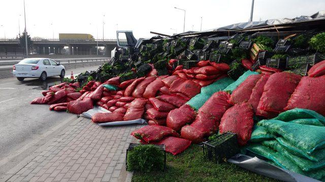 TIR devrilince dorsesindeki sebzeler yola saçıldı