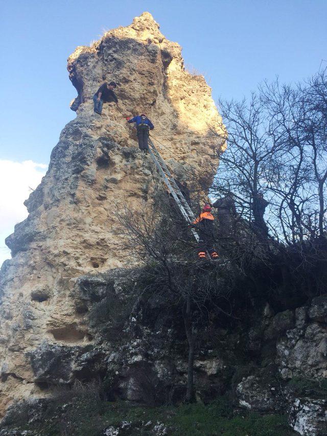 Tırmandığı kayalıkta mahsur kalan genci AFAD ekibi kurtardı