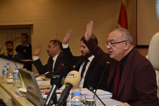 Mesir Festivaline Afrin düzenlemesi