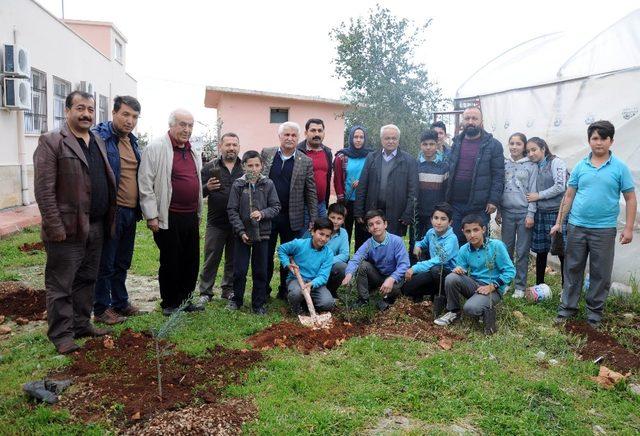 Erdemli Ziraat Odası okulları yeşillendiriyor