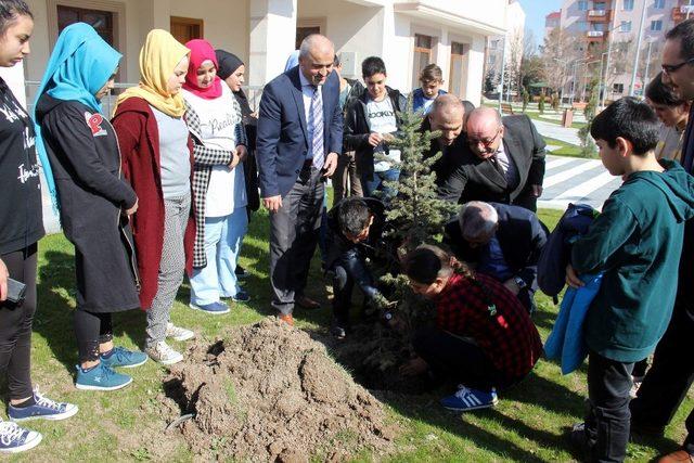 Çocuk Evleri 'ndeki çocuklar 41 şehit için 41 çam ağacı dikti