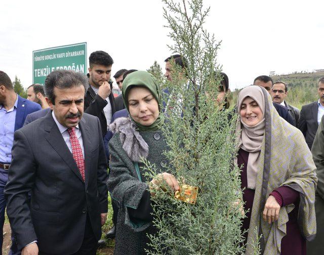 Diyarbakır'da 'Tenzile Erdoğan Hatıra Ormanı' kuruldu