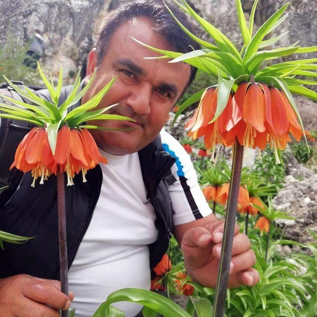 Kahramanmaraş'ta ters laleler katlediliyor