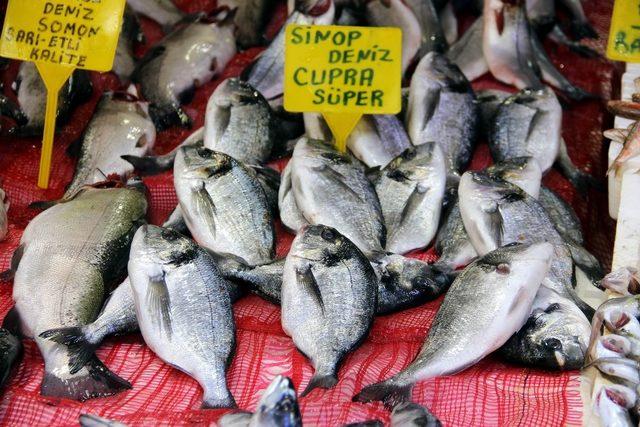 Balıkçıların hayali bir başka sezona kaldı