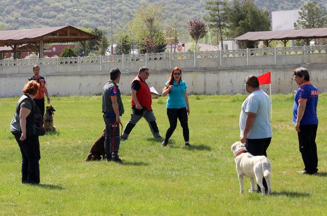 Arama kurtarma köpekleri eğitimden geçiriliyor