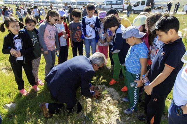 Büyükşehir Kayseri'yi yeşillendiriyor