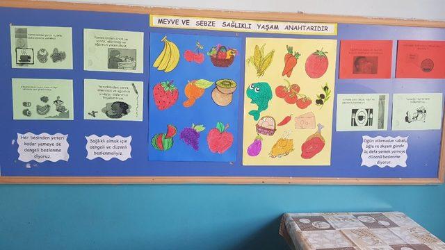 İlçelerde beslenme dostu okullar denetleniyor