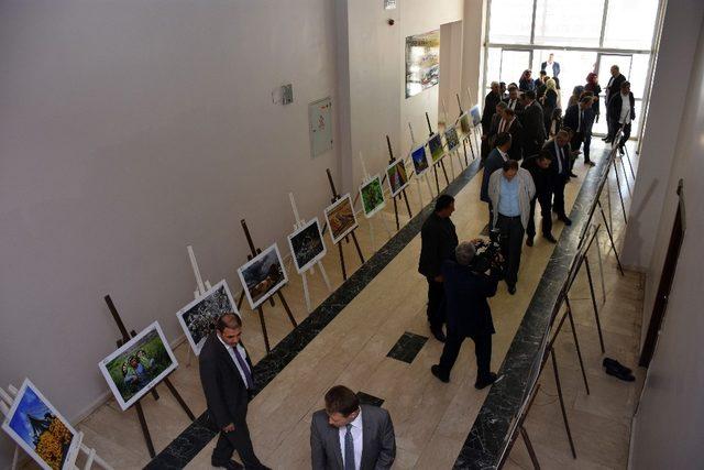 Muş'ta 'Tarım ve İnsan' konulu fotoğraf sergisi