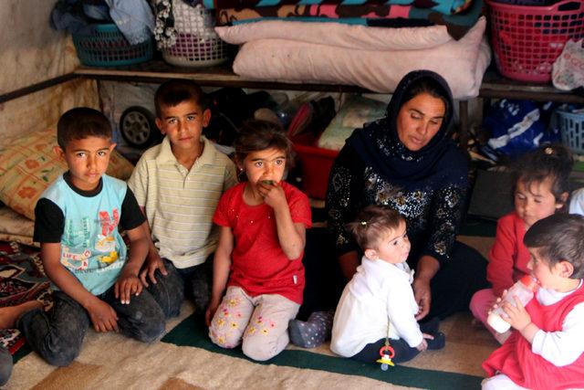 Şanlıurfa'da 11 kişilik aile 2 yıldır çadırda yaşıyor