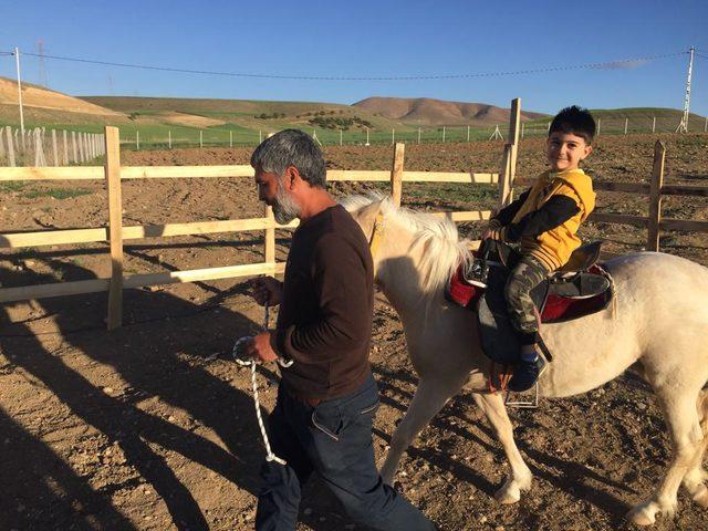 Çocuklara hayvan sevgisini öğreten çiftlik