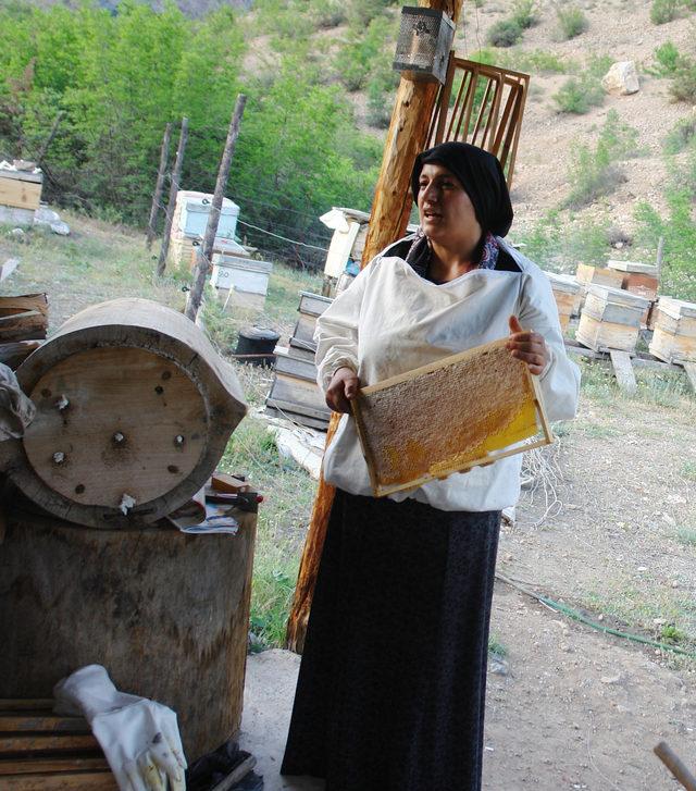 Artvinli Kadın Arıcı, Bal Üretim Sezonunu Açtı ile ilgili görsel sonucu