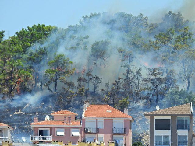 Çeşme'de korulukta yangın; 30 ağaç zarar gördü