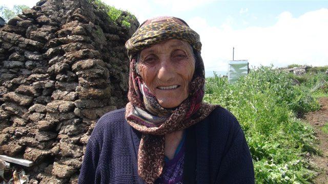 80 yaşındaki Nuriye Nine, tırpan sallıyor
