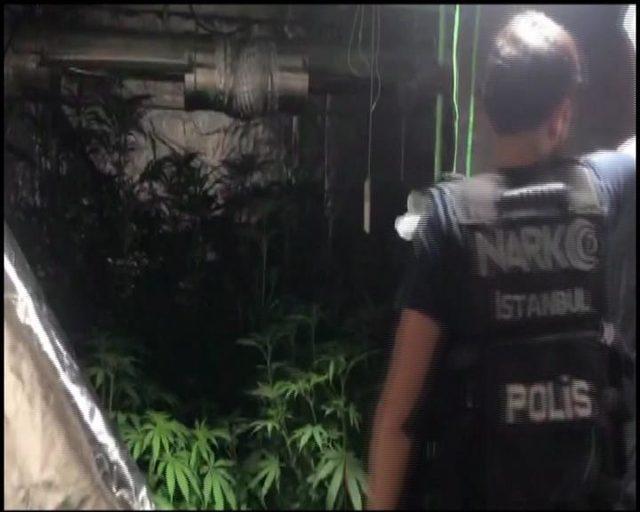 Beykoz'da villaya uyuşturucu operasyonu:1 gözaltı
