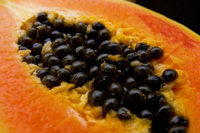 papaya-cekirdegi