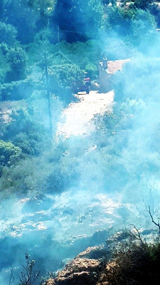 Bodrum 3 hektar makilik yandı