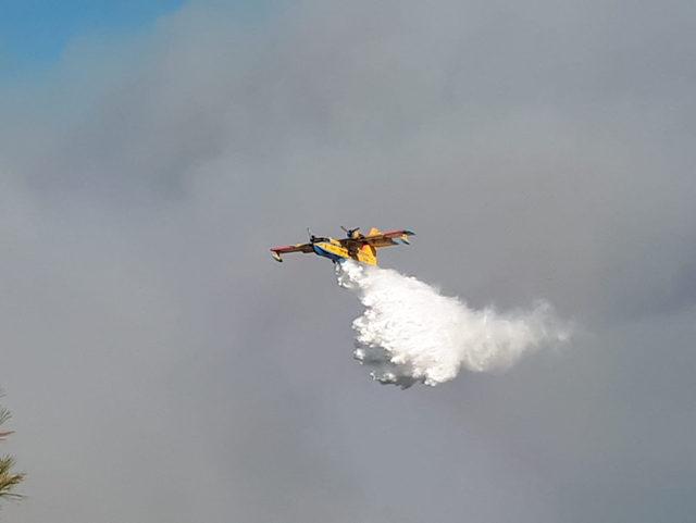 Hatay'da orman yangını (3)
