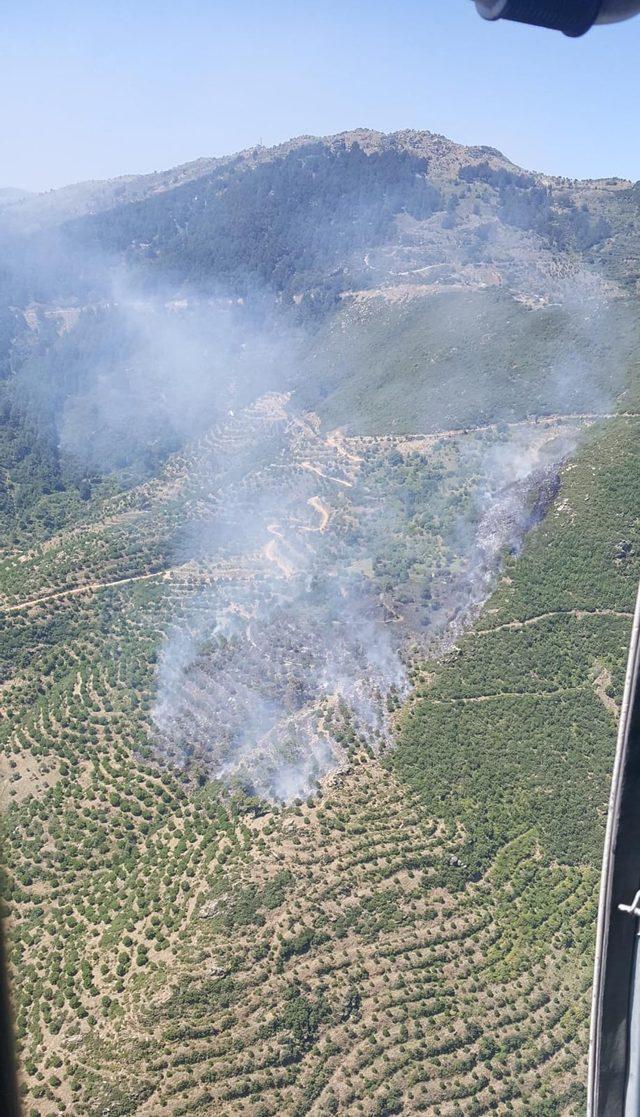 Aydın'daki yangın ormanlık alana sıçramadan söndürüldü