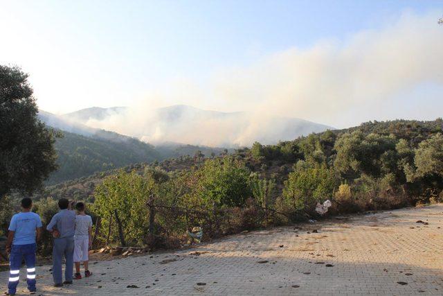 İzmir'de orman yakınında yangın (3)