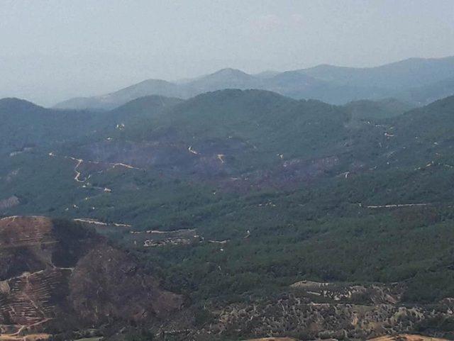 Bayındır'daki yangında 45 hektarlık orman ve zeytinlik kül oldu