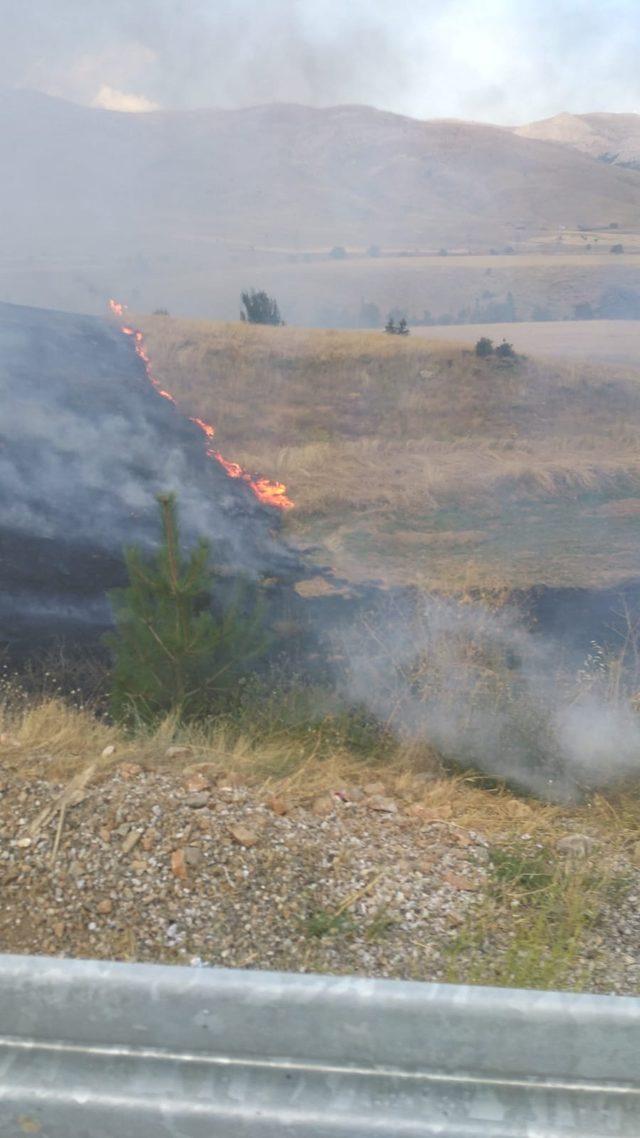 Bariyerlere çarpıp yanan TIR, buğday tarlası ile meyve bahçesini de yaktı