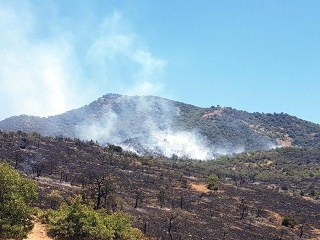Tunceli'deki orman yangınına havadan ve karadan müdahale ediliyor
