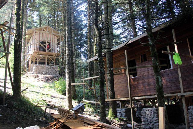 gölcük tabiat parkı bungalov ile ilgili görsel sonucu