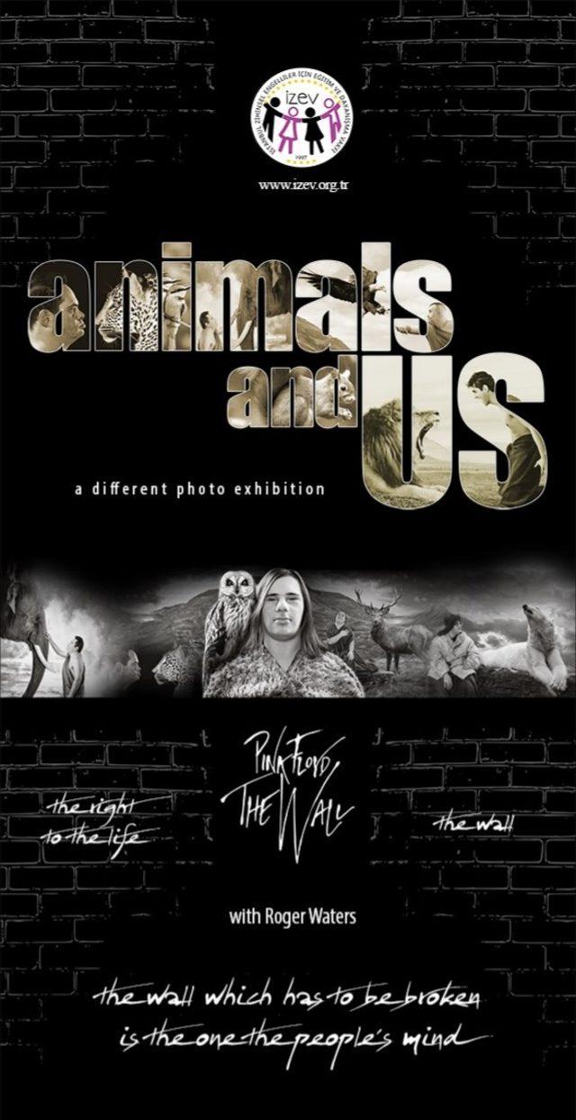 'Hayvanlar ve Biz' sergisi Miami'de açılıyor