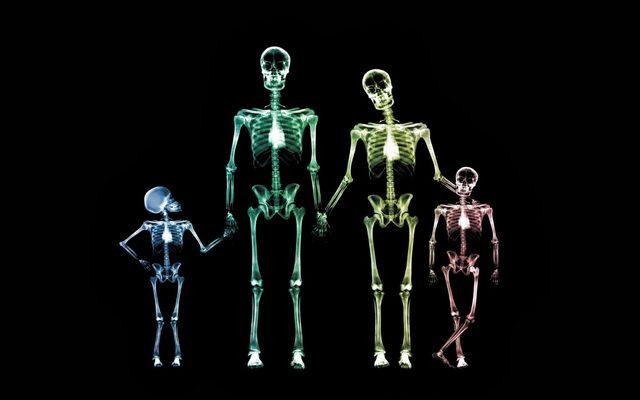 skeleton-family-1800x2880