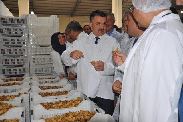 Bakan Pakdemirli, Aydın'da organik incir işleme tesisini gezdi