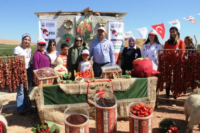 370 belediye başkanı Şanlıurfa'yı gezdi