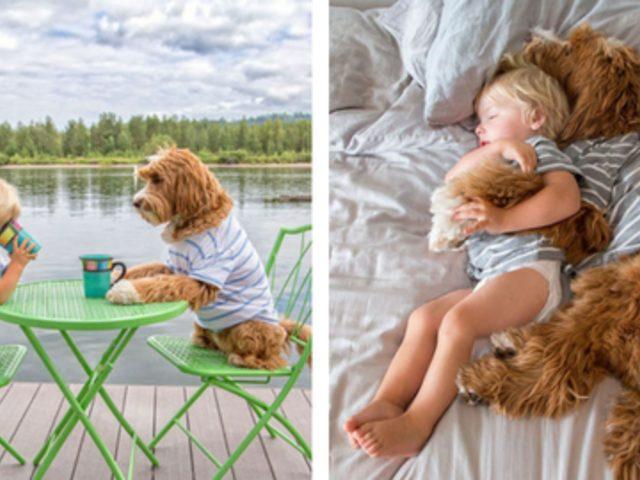Evlatlık Çocukla Evlatlık Köpeğin Aşırı Tatlı Hikayesi!
