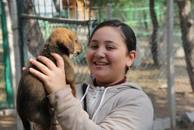 Çorum'da Dünya Hayvanları Koruma Günü etkinlikleri