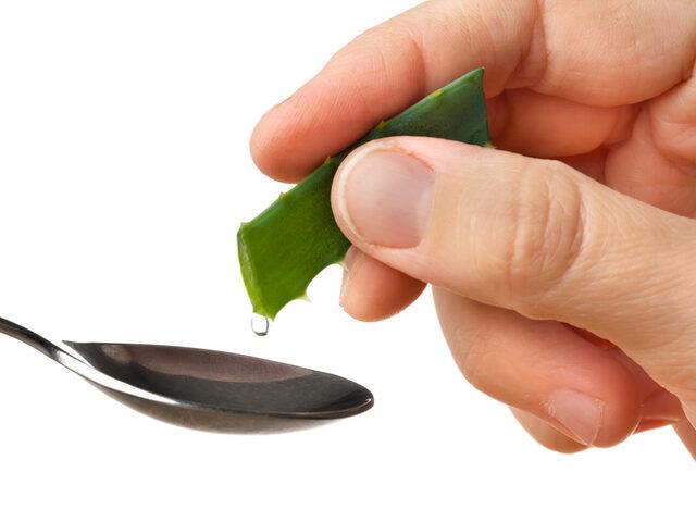 Gerçek bir doğa mucizesi Aloe Vera! İşte Aloe Veranın faydaları