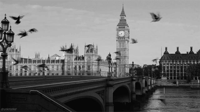 полюбила, лондон двигающаяся картинка вузе