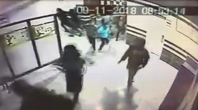 Okula giren pitbull vuruldu(2)